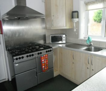 The large double cooker and microwave
