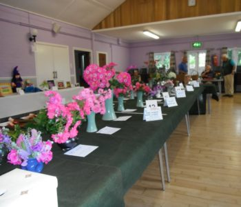 Horticultural Society Rose Show June 2017
